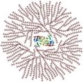 Glycogen structure.png