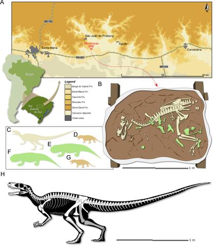 Fósiles de dinosaurios encontrados en Brasil