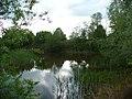 Gras See Naturschutzgebiet.jpg