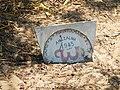 Grave.jpg.jpg