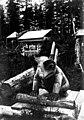 Grave totem, possibly depicting a bear, Alaska, circa 1910 (AL+CA 6799).jpg