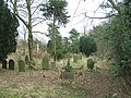 Graveyard of Handley Church, Middle Handley, Nr Eckington in NE Derbyshire. - geograph.org.uk - 112969.jpg