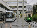Graz Linien Variobahn und Tramway Museum Graz TW 206 bei der MED UNI.jpg