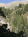 Grove Creek Trail in September - panoramio - photophat (7).jpg