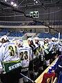 HC Energie players 2007.jpg