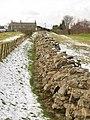 Hadrian's Wall (9) - geograph.org.uk - 1724668.jpg