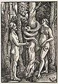 Hans Baldung - Adam and Eve - 1953.354 - Cleveland Museum of Art.jpg
