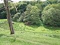 Hawarden Castle Estate (5).JPG