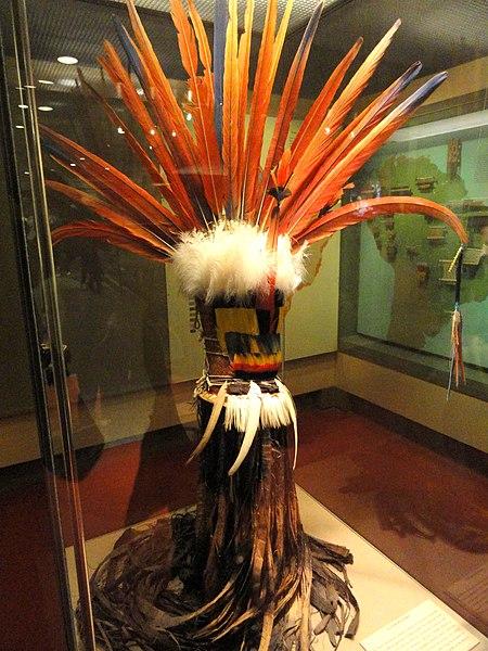 Ficheiro:Headdress, feathers, Wayana - AMNH - DSC06191.JPG