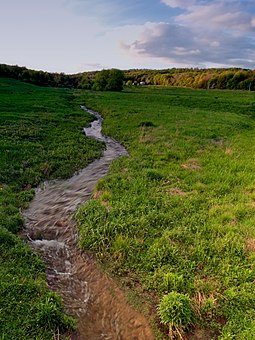 The headwaters of the Allegheny River are in this meadow in Potter County Headwater Stream (1).jpg