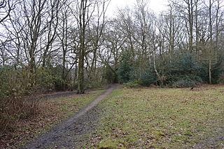 Hertford Heath nature reserve