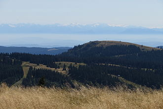 Herzogenhorn - The Herzogenhorn seen from the Feldberg. The Alps may be seen in the far distance.