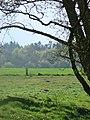 Hesselvig - panoramio.jpg