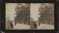 Highlands, New Jersey, from Robert N. Dennis collection of stereoscopic views.png
