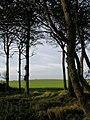 Hoggart Hill, Humbleton - geograph.org.uk - 273457.jpg