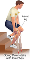 Home Care Crutches Downstairs.png