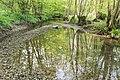 Horn-Bad Meinberg - 2015-05-10 - LIP-028 Silberbachtal mit Ziegenberg (30).jpg