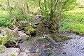 Horn-Bad Meinberg - 2015-05-10 - LIP-028 Silberbachtal mit Ziegenberg (9).jpg