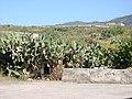Horno en Casa el Pino - panoramio.jpg