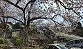 Hyakusai-ji temple , 百済寺(ひゃくさいじ) - panoramio (7).jpg