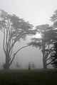 Ickworth House, Suffolk, England -mist-2March2012 (3).jpg