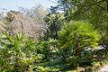 In the Castles garden (34140248674).jpg