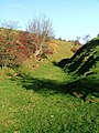Jackdaw Griff-Black Dale - geograph.org.uk - 292324.jpg