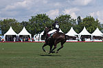 Jaeger-LeCoultre Polo Masters 2013 - 31082013 - Match Legacy vs Jaeger-LeCoultre Veytay for the third place 16.jpg