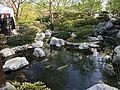 Japanese Friendship Garden (Balboa Park, San Diego) 9 2016-05-14.jpg