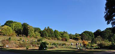 Jardin Botanique Jean Marie Pelt Wikipedia