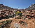 Kanab Creek Wilderness (8101142370).jpg