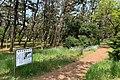 Kashiwazaki Shiokaze Park May2021.jpg