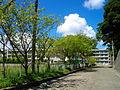 Katsuura Wakashio High School.JPG