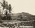 Kawaihae grass house, 1889 (PPWD-8-2-004).jpg