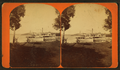Kaye's Park. (Steamer in view.), by McPherson & Sons.png