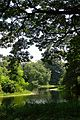 Kings Lake - Indian Botanic Garden - Howrah 2012-09-20 0097.JPG