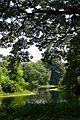 Kings Lake - Indian Botanic Garden - Howrah 2012-09-20 0097.JPG
