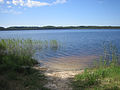Kirikumäe järv.JPG