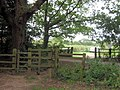 Kissing Gate by Allotments, Bookham Common - geograph.org.uk - 1416482.jpg