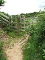 Kissing gate - geograph.org.uk - 841132.jpg