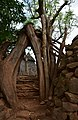 Konso village of Mecheke (4) (29156805225).jpg