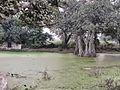 Kosli, Haryana 123302, India - panoramio (15).jpg