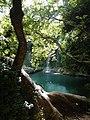 Kurşunlu Şelalesi Tabiat Parkı ve Etrafındaki Yaşlı Ağaçlar.jpg