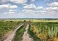 Kuzminskoye, Ryazanskaya oblast', Russia, 391103 - panoramio (30).jpg