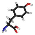 L-tyrosine-3D-sticks.png