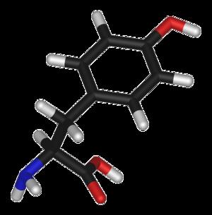 Tyrosine (data page) - Image: L tyrosine 3D sticks