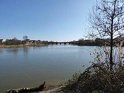 La Meurthe à Nancy.jpg