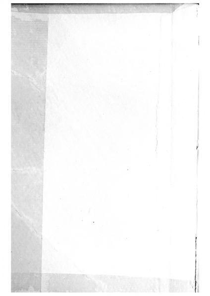 File:La scotennatrice.djvu