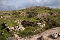 Lachish 160313 05.jpg