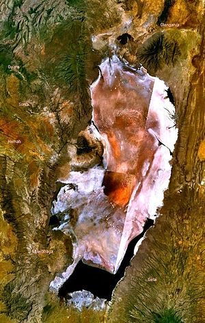 Lake Natron - Lake Natron as seen on NASA's World Wind program